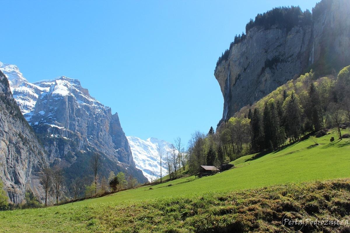 Widok na dolinę Lauterbrunnen z soczyście zieloną trawą i z wysokimi górami okrytymi śniegiem w tle
