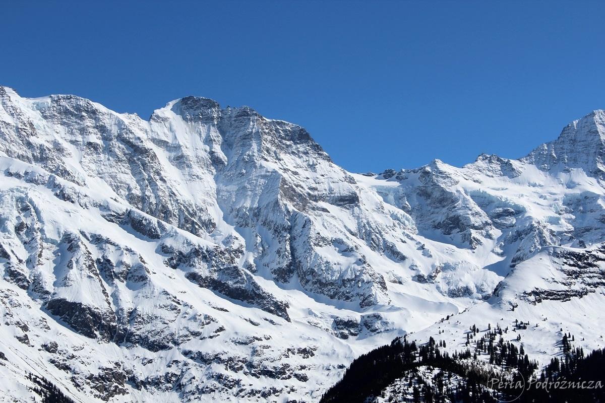 Widok na ośnieżone, skalne szczyty Alp
